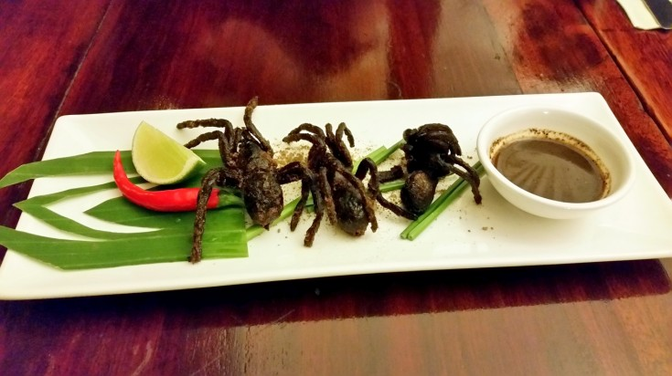 Fried tarantula is a delicacy in Cambodia