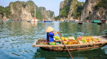 5 days in vietnam is enough time to take a halong bay cruise