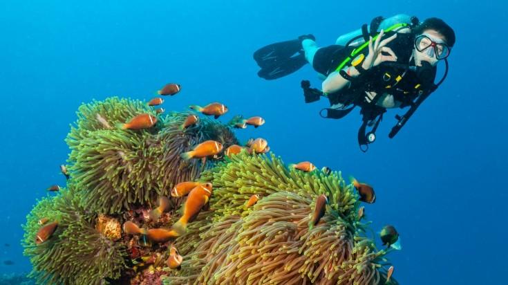 adventures in dubai scuba diving