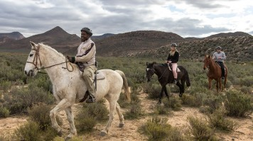 Horseback Safari near Cape Town