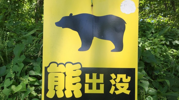 There are bears in the Koyasan area so it's worth taking a bear bell just in case!