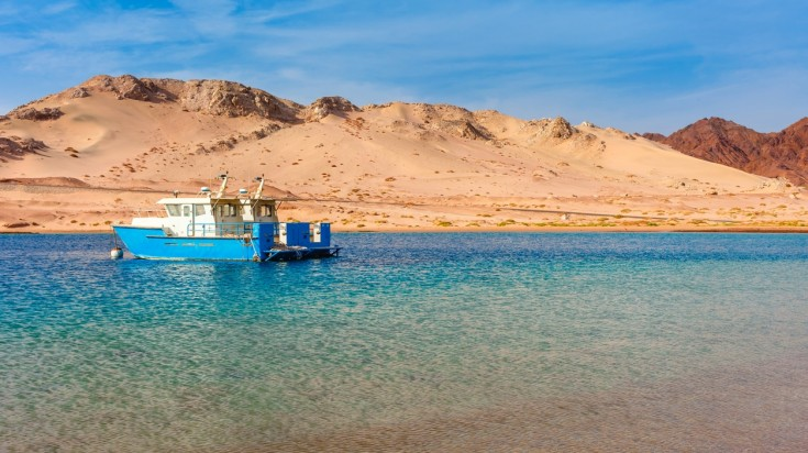 One of the best dive sites in the middle east is at the Red Sea Coast