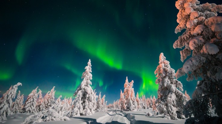 Best places to see the northern lights night light