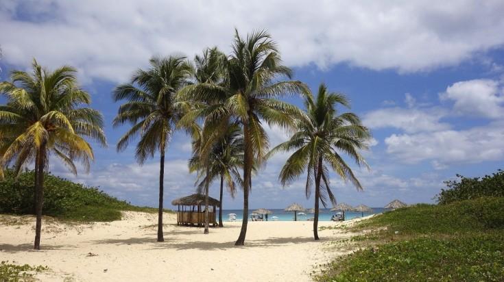 Caribbean beach with palm trees in Cuba