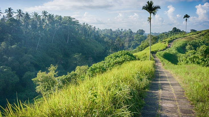 In Ubud, you will find the short and easy hike in Campuhan ridge.