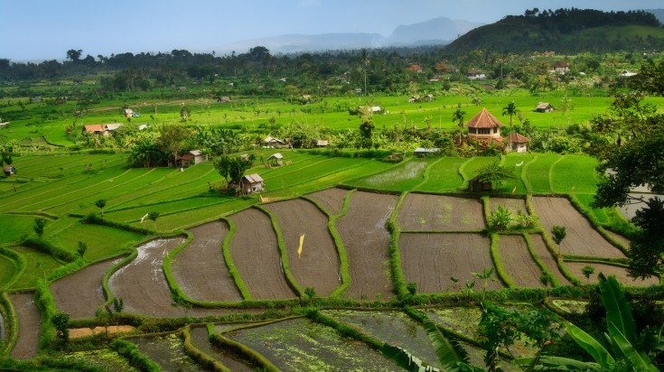 Hike in Bali through the old villages and rice fields in Candidasa