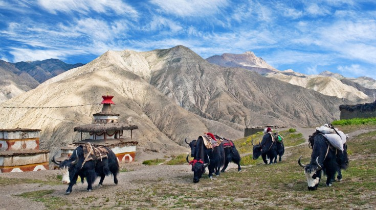 Upper Dolpo trek, the most remote and least developed district in Nepal