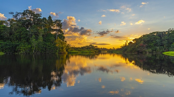 A canal in Tortuguero National Park
