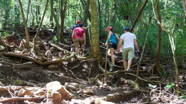Hiking in Costa Rica's rainforests