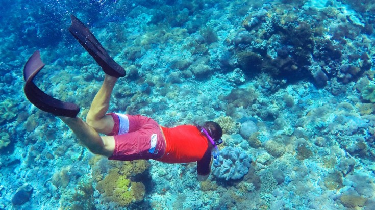 Go diving in the Flores Islands and explore the marine life.