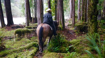 exclusive hotels clayoquot horseriding