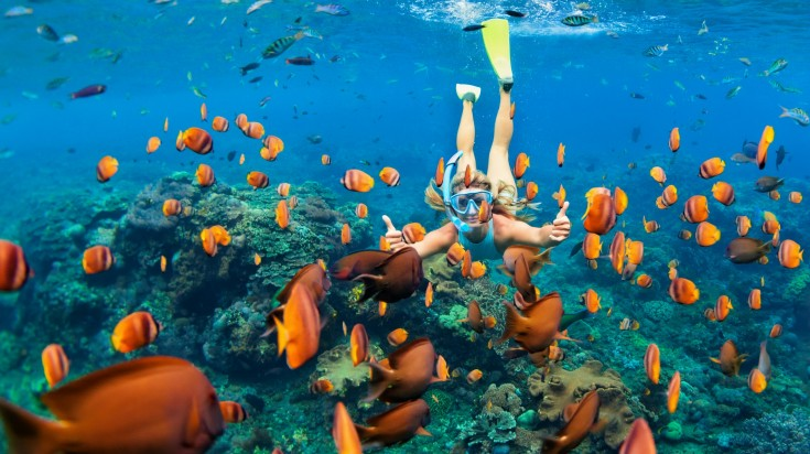Girl in snorkeling mask dive underwater with coral reef fishes in Cozumel