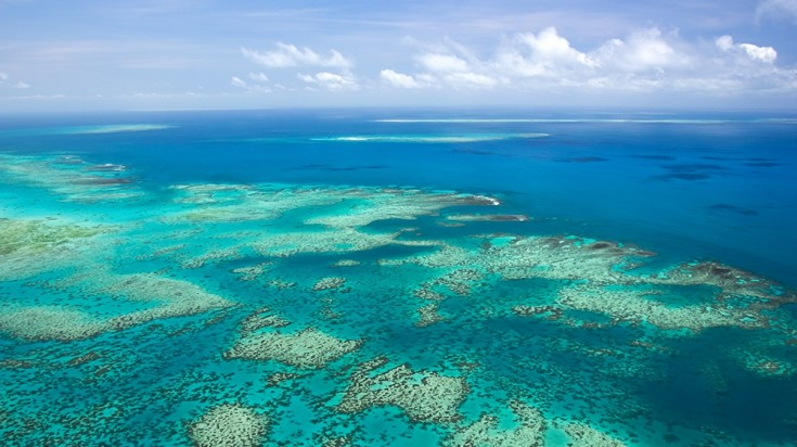 Great Barrier Reef, one of the prime spots for diving in Australia.