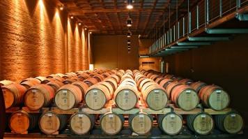 wine cellar at Groot Constantia