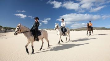 Horseback Riding in Grootbos, safari near cape town