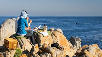 Whale watching at Grootbos in one of the cape town safaris