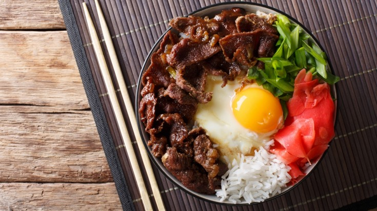 Gyudon is a food bowl consisting of beef, onions and rice ans soy sauce.