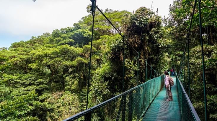 Hanging bridge in the Monteverde Cloud Forest in Costa Rica
