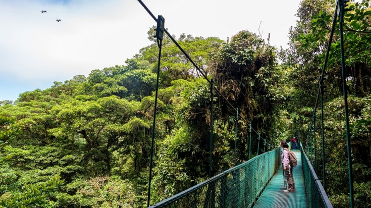 A hanging bridge in Monteverde National Park in Costa Rica