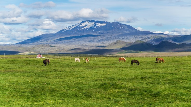Horse riding in Hekla