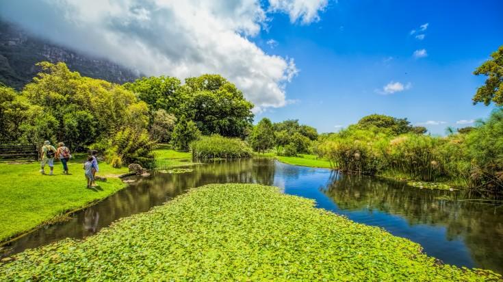 Kirstenbosch Garden  in Cape Town