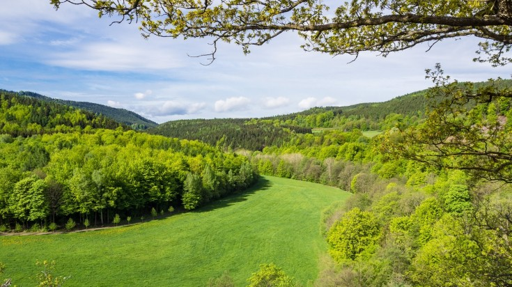 The Rennsteig is a rewarding trail for hiking in Germany