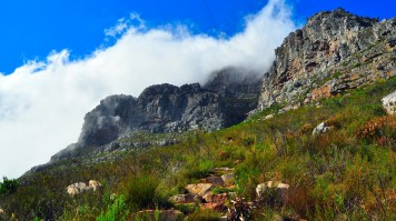 Table Mountain hiking trails