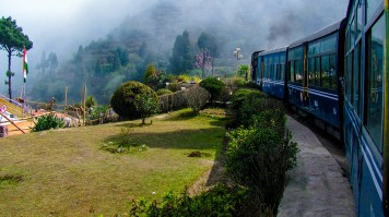 A train passing by a small garden
