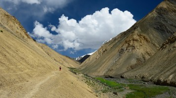Markha valley trekking in India