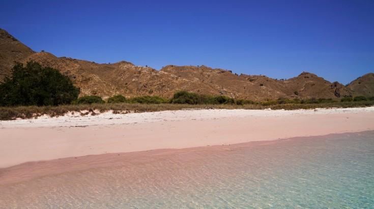 Pink beach is a famous Indonesia beach