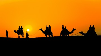 Camel Safari in Jaisalmer