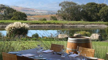 Wine Tasting in Jordan Estate