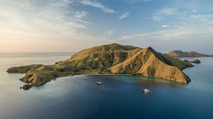 Komodo, indonesia's island is the home of the monitor lizard, Komodo Dragon
