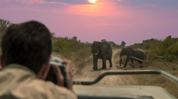 Best time to visit Kruger National Park in South Africa