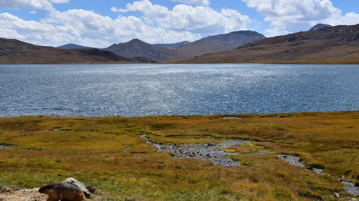 Blue water of lake in Deosai National Park
