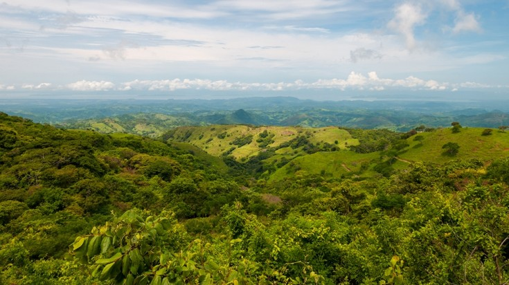 Monteverde Cloud Forest Reserve spans for miles.