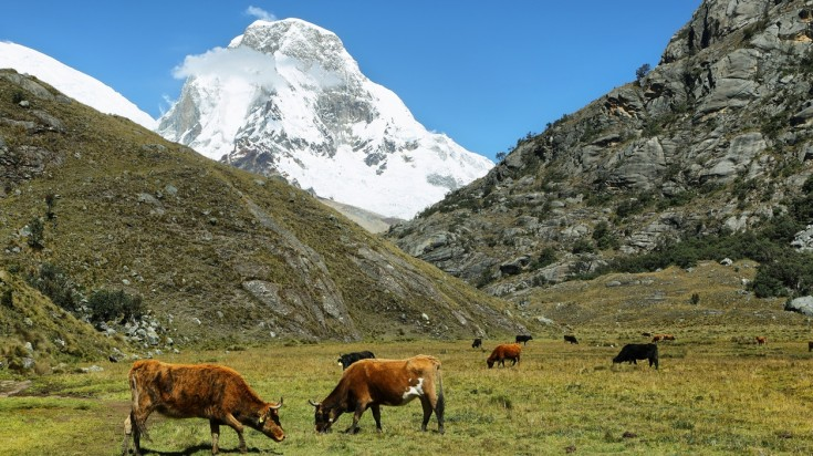Mount Huascaran can be seen from the Laguna 69 hiking trail