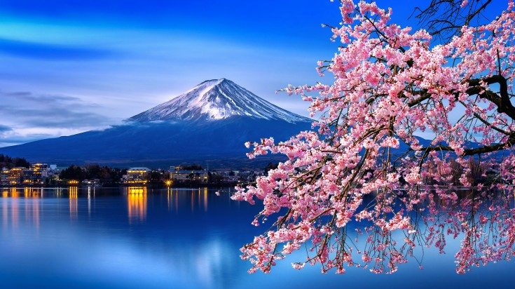 Among various things to do in Tokyo, taking a day trip to Mount Fuji is highly recommended.