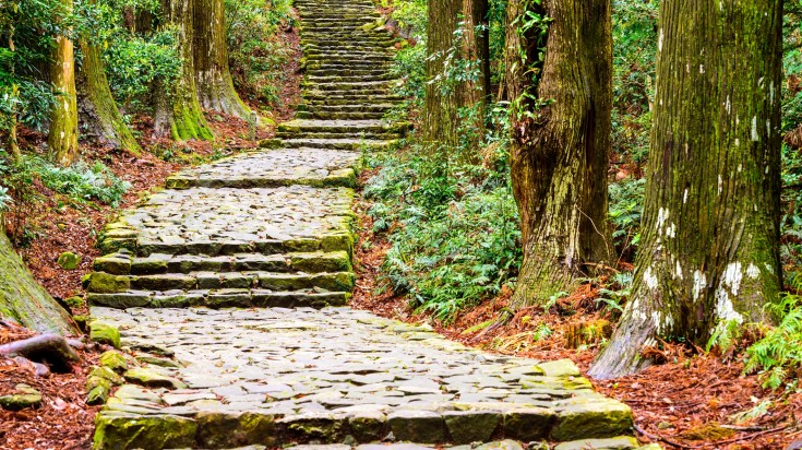 Pay tribute to the 75 sacred sights containing small shrines as you walk along the Kumano Kodo trail.