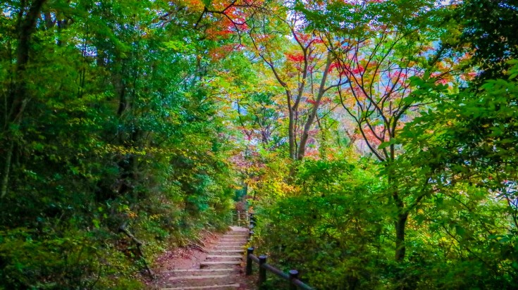 The Omotesando trail is one of the best hikes in Japan that you should take!
