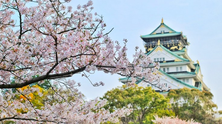 To experience the best of cherry blossom festival in Japan, visit the Nishinomaru Garden having beautiful manicured lawns.