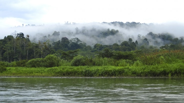 Palo Verde National Park is home to unique river wildlife in Costa Rica