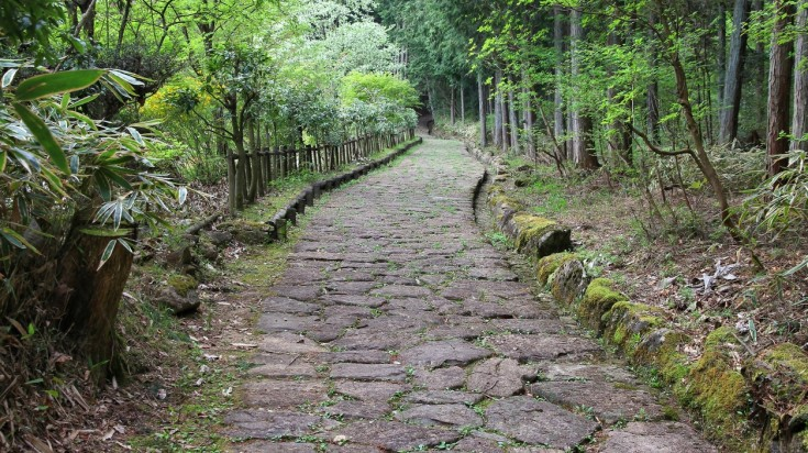 When you're hiking in Japan it is a must to hike the Magome Tsumago Trail.