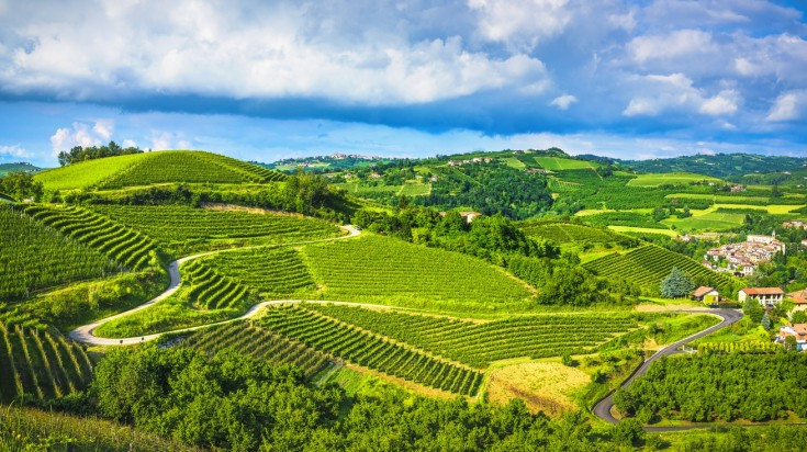 Langhe is a hilly area in Piedmont famous for its wine,truffles and cheese a must visit when you're exploring Italy in a week.