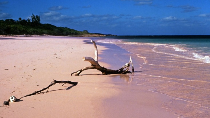 This best beach is one of the 7 pink beaches around the world.