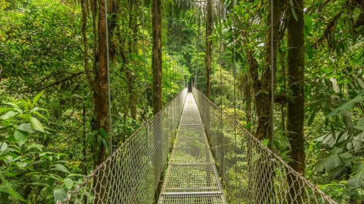 Monteverde is the best place to visit in Costa Rica for hiking
