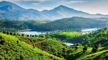 Munnar is one of the best places to visit in Kerala