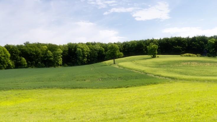 Landscape on the Rennsteig hiking trail
