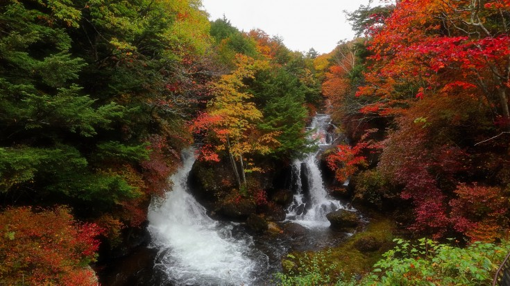 The route is quite spectacular and offers excellent views of the surrounding marshlands, mountains and the Nikko National Park.