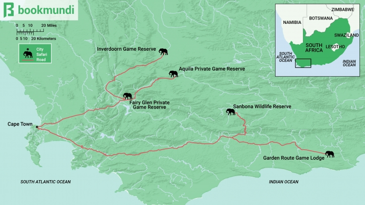 Best Safari Destinations Near Cape Town